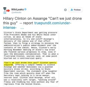 Internet screen shot of wikileaks released info