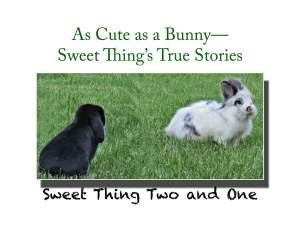 Bunny book, true stories